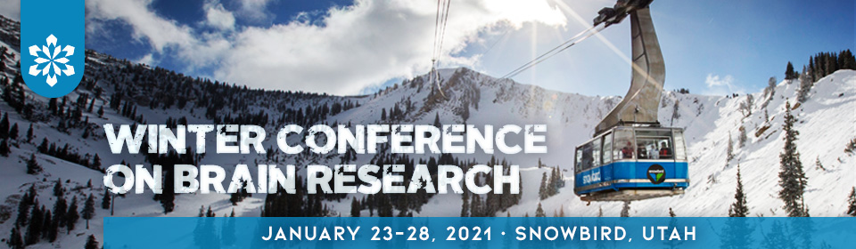 Winter Conference on Brain Research